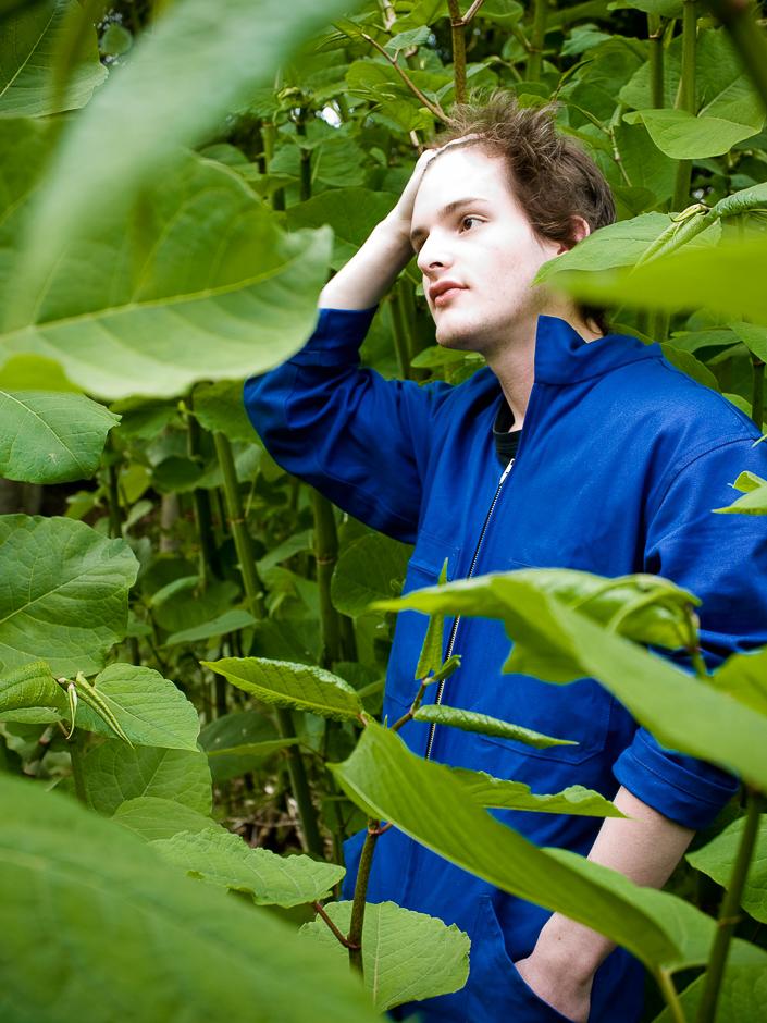 2-b-artiste-botaniste