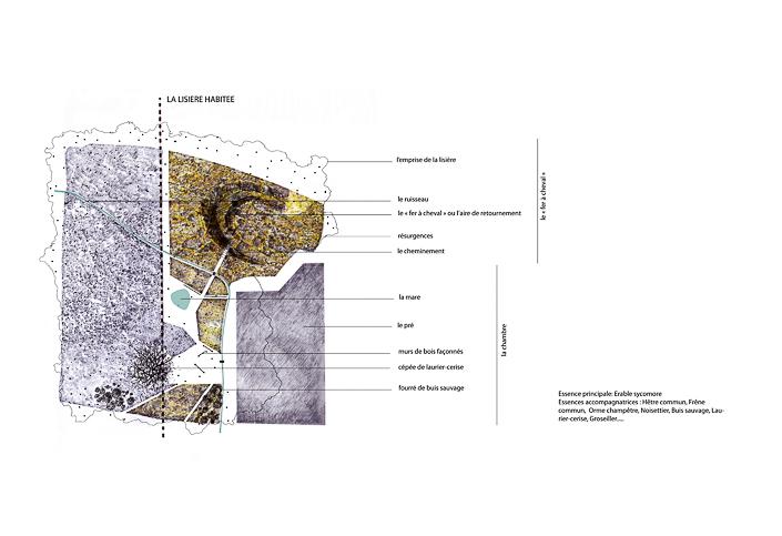 Plan de plan Chamarande tapis forestier